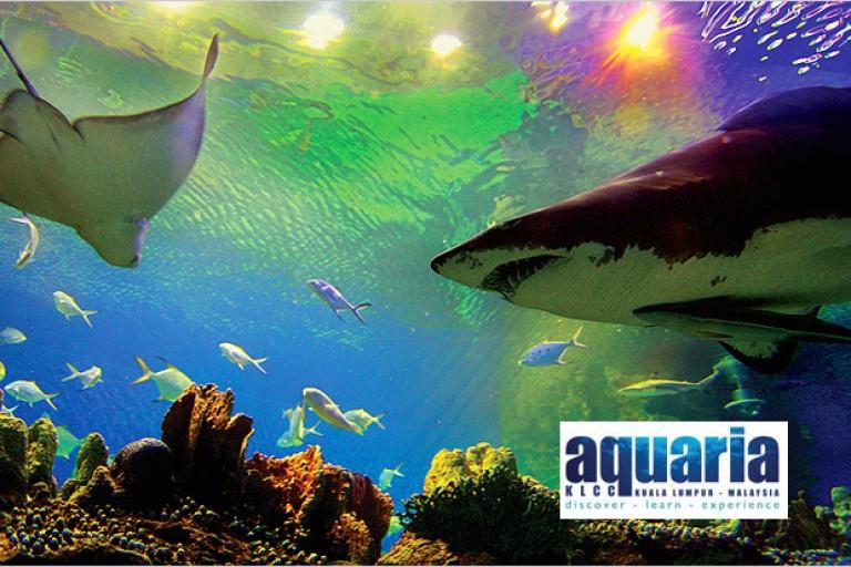 img_aquaria-2
