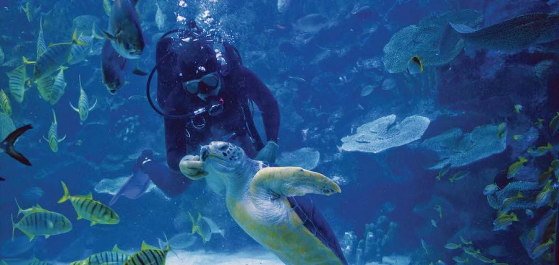 aquaria-klcc-01