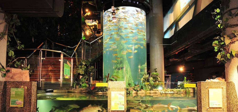 aquaria-klcc-05