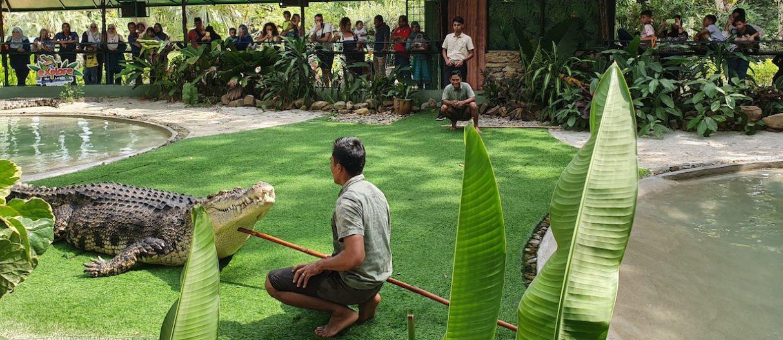 Bujang Lang Giant Croc Show 2 Slider 1